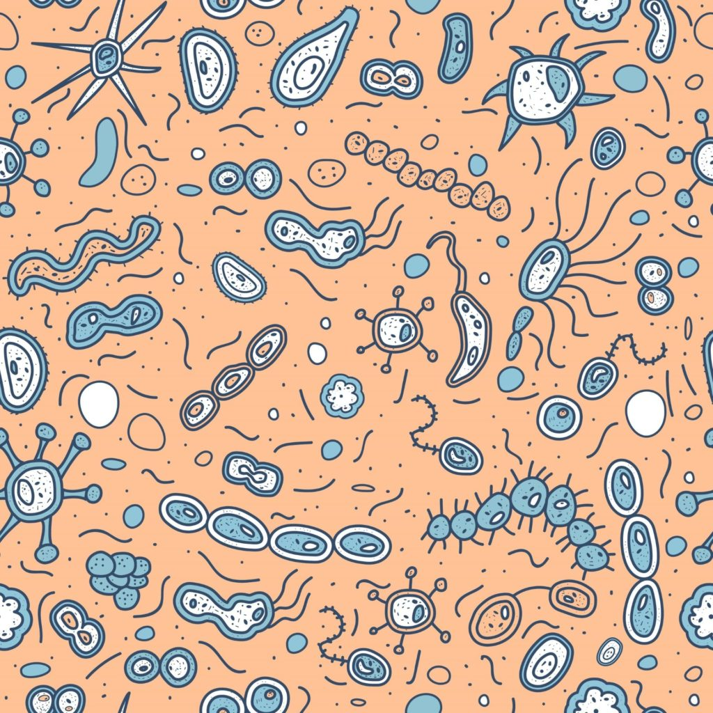 What is your microbiome, and what does it have to do with your skin?