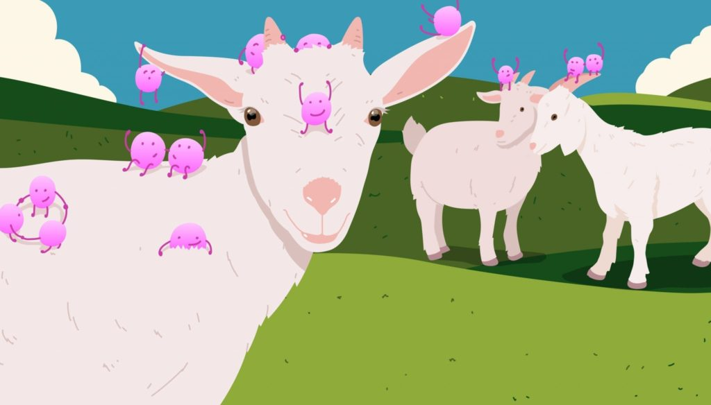 Chuckling Goat kefir now sells Atlas Biomed microbiome tests!